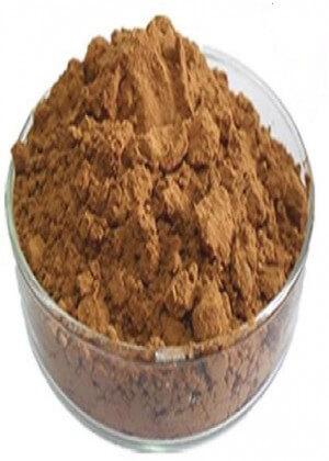 Mane Mushroom Powder